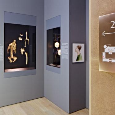 LMW Leitsystem Ausstellung