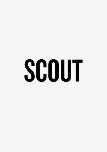 Presse, Cover, Scoutmagazine